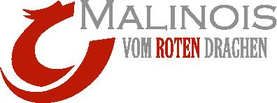 Malinois vom roten Drachen